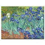 Πίνακας Vincent Van Gogh - Irises 1889