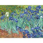 Αφίσα Vincent Van Gogh - Irises 1889