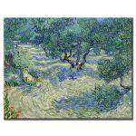 Πίνακας Vincent Van Gogh - Olive Orchard 1889