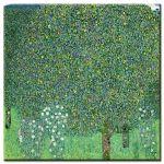 Πίνακας Gustav Klimt - Rosebushes under the Trees 1905