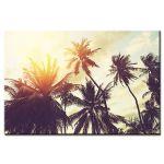 Πίνακας Palm Trees