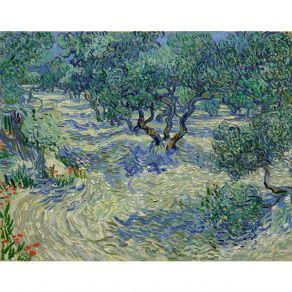 Αφίσα Vincent Van Gogh - Olive Orchard 1889