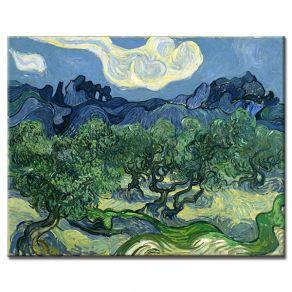 Πίνακας Vincent Van Gogh - The Olive Trees 1889